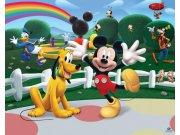 3D Fototapeta Walltastic Mickeyho klubík 42056 | 305x244 cm Fototapety