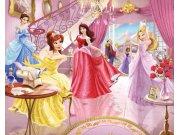 3D Fototapeta Walltastic Princezny 40649 | 305x244 cm Fototapety skladem