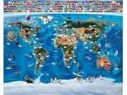 3D Fototapeta Walltastic Mapa Světa 41851 | 305x244 cm Fototapety skladem
