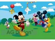 Fototapeta AG Mickey Mouse FTDS-0253 | 360x254 cm Fototapety