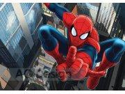 Fototapeta AG Spiderman FTDS-2209 | 360x254 cm Fototapety skladem