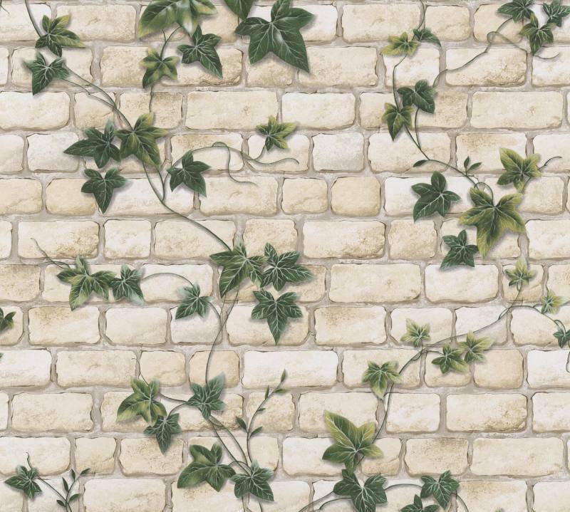 Levná Tapeta břečťan na zdi 9804-34 - Tapety skladem
