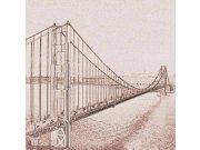 Fototapeta Golden Gate sépiová kresba L-302   220x220 cm Fototapety