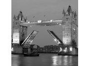 Fototapeta Tower Bridge šedý L-306 | 220x220 cm Fototapety