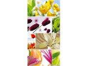 Fototapeta Koláž květin 1 2 S-443 | 110x220 cm Fototapety