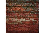 Fototapeta Cihlová zeď L-158 | 220x220 cm Fototapety