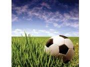 Fototapeta Fotbalový míč L-260 | 220x220 cm Fototapety