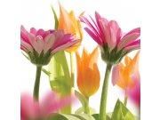 Fototapeta Jarní květiny L-193 | 220x220 cm Fototapety