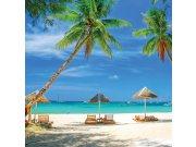 Fototapeta Tropická pláž L-180   220x220 cm Fototapety