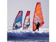Fototapeta Surfaři L-176 | 220x220 cm Fototapety