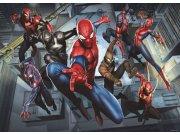Fototapeta AG Spiderman FTDM-0751 | 160x115 cm Fototapety