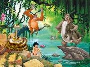 Fototapeta AG Kniha Džunglí FTDNXXL-5045 | 360x270 cm Fototapety