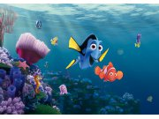 Fototapeta AG Nemo FTDNXXL-5061 | 360x270 cm Fototapety
