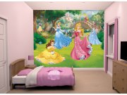 3D Fototapeta Walltastic Disney Princezny 43800 | 305x244 cm Fototapety skladem
