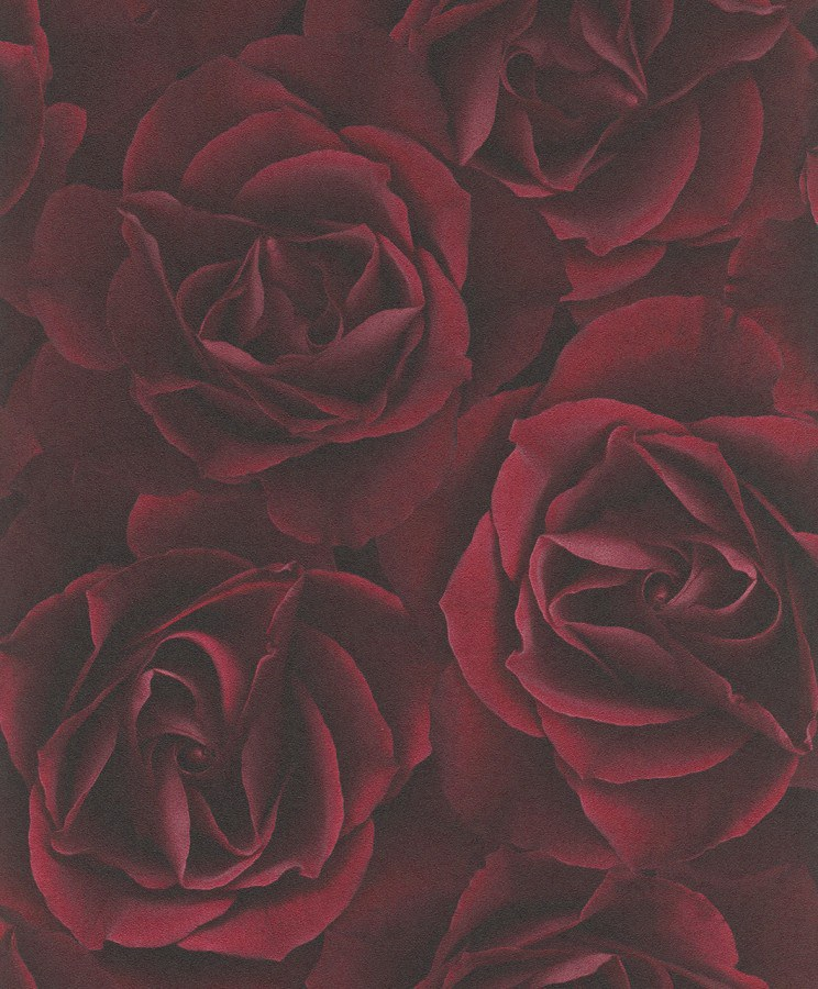 Tapeta Růže 525625 | 0,53x10,05 m - Rasch