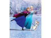 3D Fototapeta Walltastic Frozen 43909 | 203x243cm Fototapety