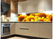 Fototapeta do kuchyně Slunečnice KI-260-051 Fototapety