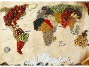 Fototapeta AG Mapa světa s koření FTNXXL-2484 | 360x270 cm Fototapety