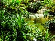 Fototapeta AG Přírodní laguna FTNXXL-2491 | 360x270 cm Fototapety