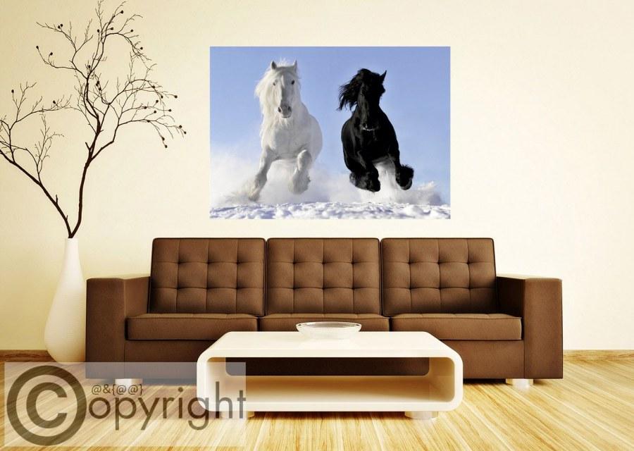 Fototapeta AG Bílý a černý kůň FTNM-2691 - Fototapety