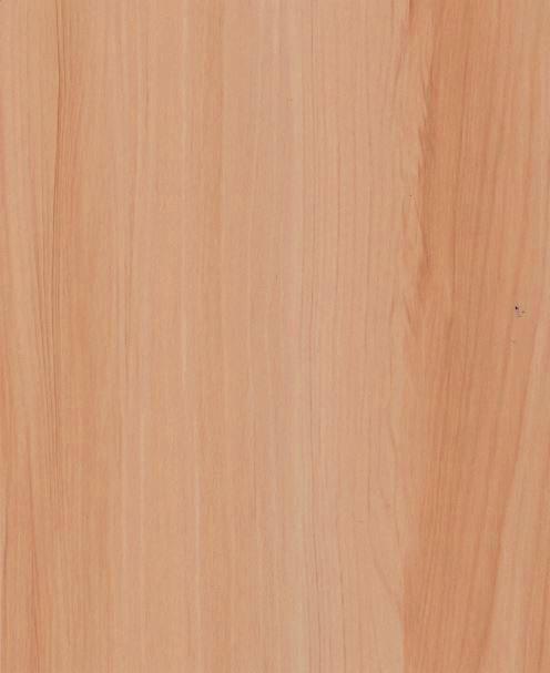 Samolepící fólie na dveře Jasan Florida 99-6195 2,1 m x 90 cm - Tapety samolepící