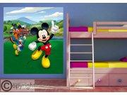 Fototapeta Mickey Mouse FTDNXL-5148 | 180x202 cm Fototapety