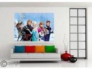Fototapeta Frozen FTDNM-5260 | 160x110 cm Fototapety