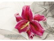Fototapeta AG Lilie FTXXL-0187 | 360x2270 cm Fototapety skladem