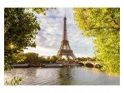 Fototapeta na zeď Seina v Paříži | MS-5-0028 | 375x250 cm Fototapety
