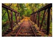 Fototapeta na zeď Železnice v lese   MS-5-0055   375x250 cm Fototapety