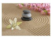 Fototapeta na zeď Zahrada zen | MS-5-0117 | 375x250 cm Fototapety