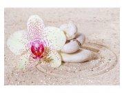 Fototapeta na zeď Relaxační písek | MS-5-0119 | 375x250 cm Fototapety