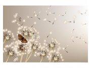 Fototapeta na zeď Pampeliška a motýl | MS-5-0148 | 375x250 cm Fototapety