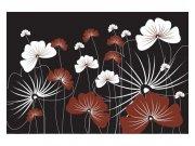 Fototapeta na zeď Květiny na černém pozadí | MS-5-0156 | 375x250 cm Fototapety