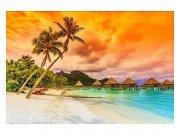 Fototapeta na zeď Polynésie   MS-5-0211   375x250 cm Fototapety