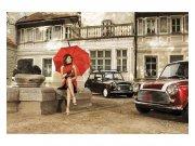 Fototapeta na zeď Dáma v červeném | MS-5-0257 | 375x250 cm Fototapety