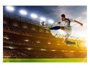 Fototapeta na zeď Fotbalový hráč | MS-5-0306 | 375x250 cm Fototapety