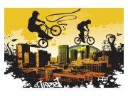 Fototapeta na zeď Cyklisti | MS-5-0326 | 375x250 cm Fototapety