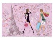 Fototapeta na zeď Pařížský styl | MS-5-0331 | 375x250 cm Fototapety