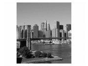 Fototapeta na zeď Manhattan v šedé barvě | MS-3-0010 | 225x250 cm Fototapety