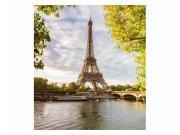 Fototapeta na zeď Seina v Paříži   MS-3-0028   225x250 cm Fototapety