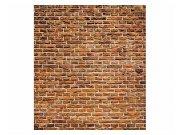 Fototapeta na zeď Stará cihlová zeď | MS-3-0167 | 225x250 cm Fototapety