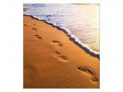 Fototapeta na zeď Stopy na pláži | MS-3-0193 | 225x250 cm Fototapety