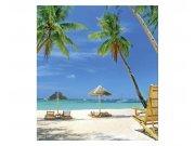 Fototapeta na zeď Tropická pláž | MS-3-0195 | 225x250 cm Fototapety