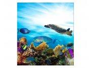 Fototapeta na zeď Ryby v oceánu | MS-3-0216 | 225x250 cm Fototapety