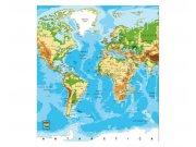 Fototapeta na zeď Mapa světa | MS-3-0261 | 225x250 cm Fototapety