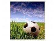 Fototapeta na zeď Fotbalový míč | MS-3-0305 | 225x250 cm Fototapety