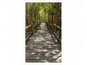 Fototapeta na zeď Mangrovový les | MS-2-0059 | 150x250 cm Fototapety