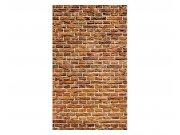 Fototapeta na zeď Stará cihlová zeď | MS-2-0167 | 150x250 cm Fototapety