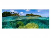Panoramatická Fototapeta na zeď Korálový útes | MP-2-0200 | 375x150 cm Fototapety